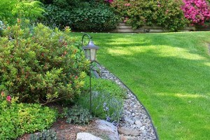 Landscaping Irrigation gallery image