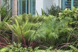 Landscaping Gallery Residential Amp Commercial Landscaping Images Kwikfynd