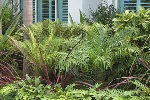 Residential Landscaping gallery image