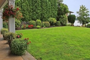 Landscaping gallery image