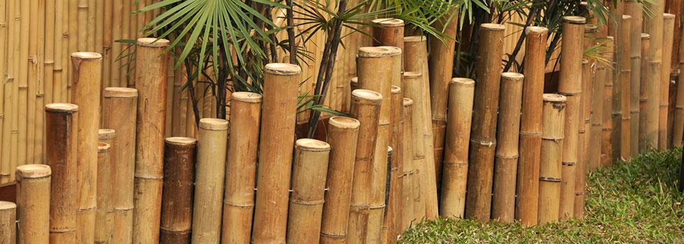 Kwikfynd Bali style landscaping 1
