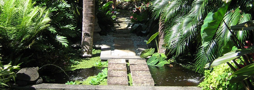 Bali style landscaping 10