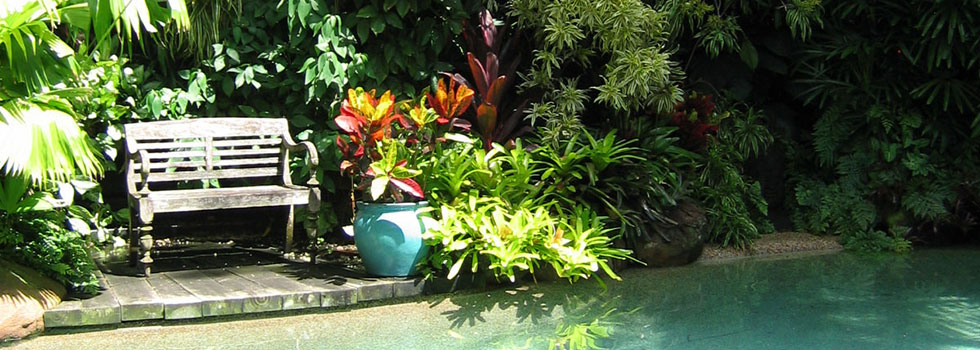 Bali style landscaping 11