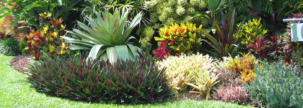 Bali style landscaping 6old