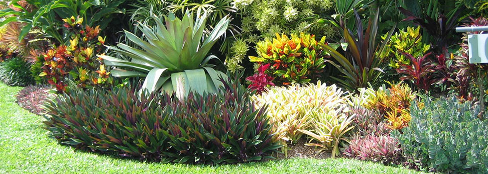 Residential Landscaping Plants : Beach and coastal landscaping residential commercial