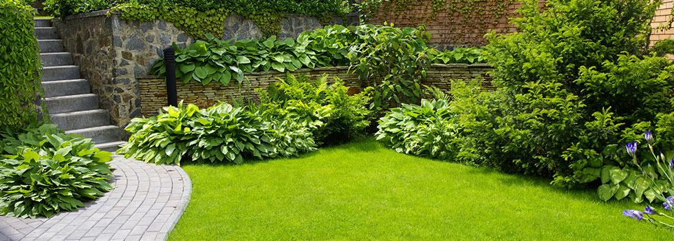 Kwikfynd Garden maintenance 23