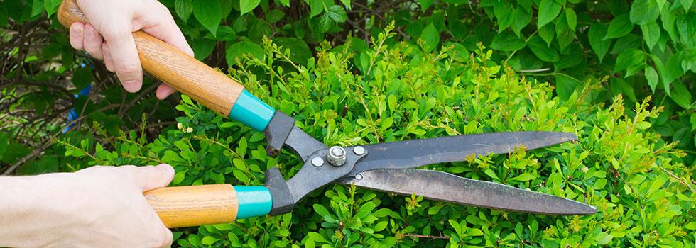 Kwikfynd Garden maintenance 24