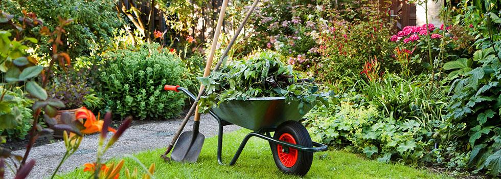 Kwikfynd Garden maintenance 27