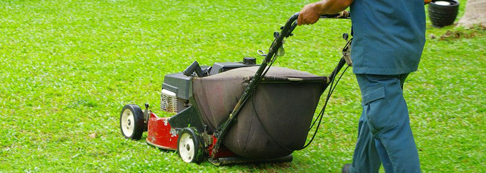 Kwikfynd Garden maintenance 28