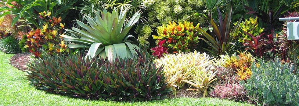 Kwikfynd Garden maintenance 4