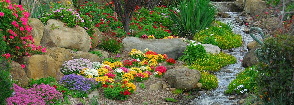 Kwikfynd Garden maintenance 50