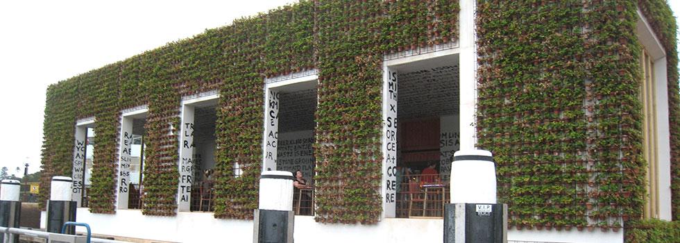 Green walls 3