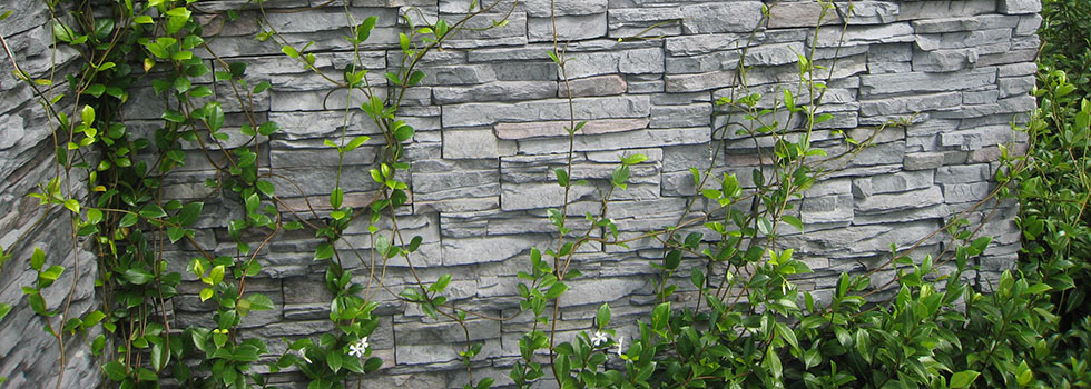 Green walls 4