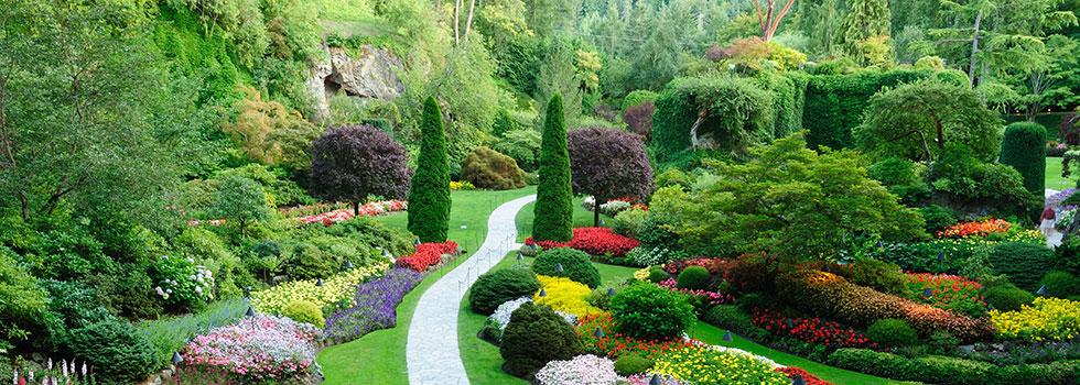 Horticulturist 34
