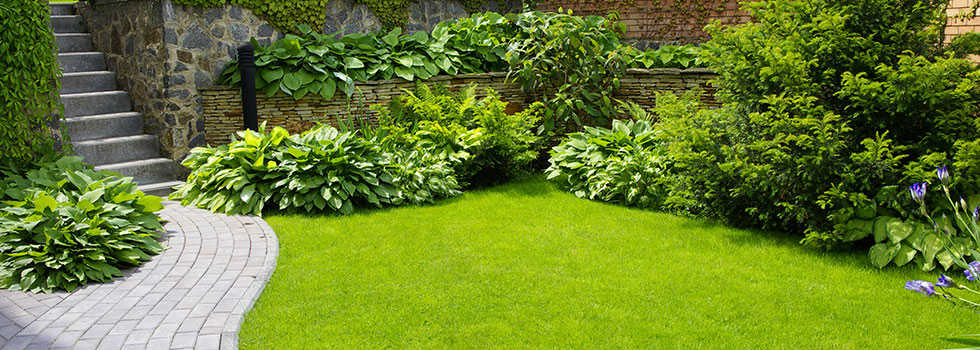 landscape contractors find the very best residential