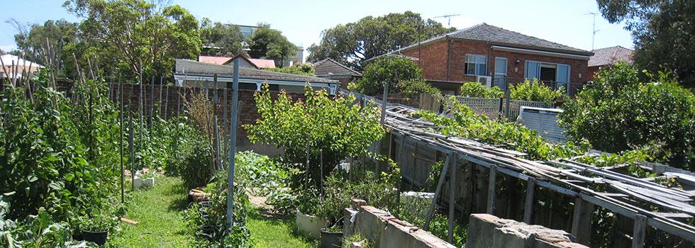 Kwikfynd Landscape gardener 19