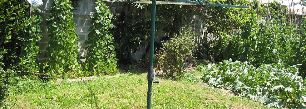 Landscape gardener 22