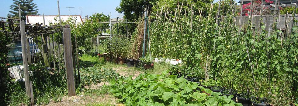 Kwikfynd Landscape gardener 23