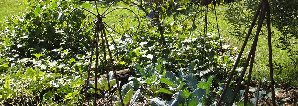 Kwikfynd Landscape gardener 26