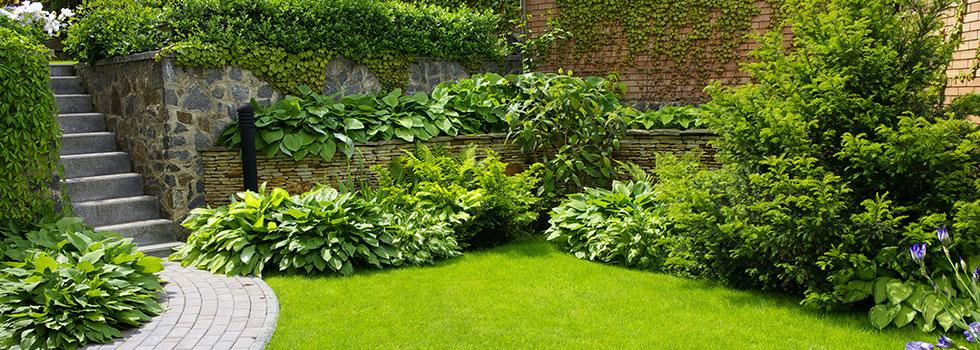 Kwikfynd Landscape gardener 29