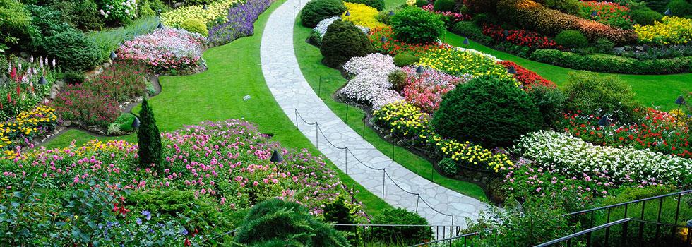 Landscape gardener 32