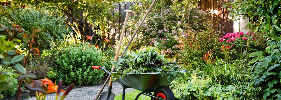 Landscape gardener 33