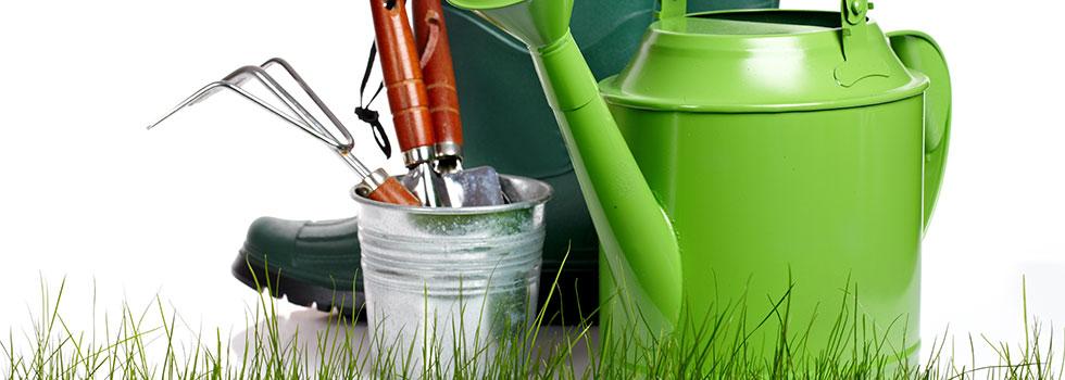 Landscape gardener 36