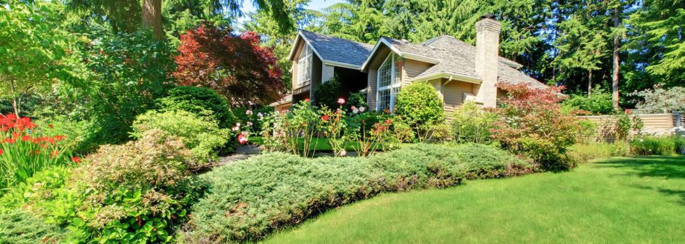 Landscape gardener 42