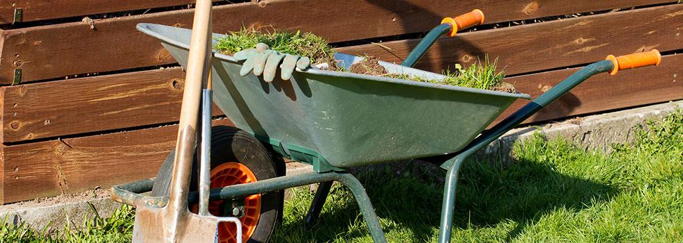 Landscape gardener 43