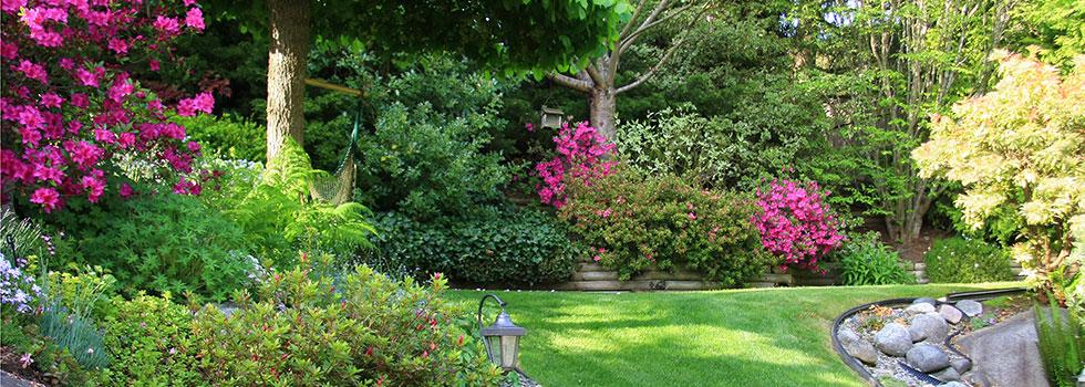 Landscape gardener 46