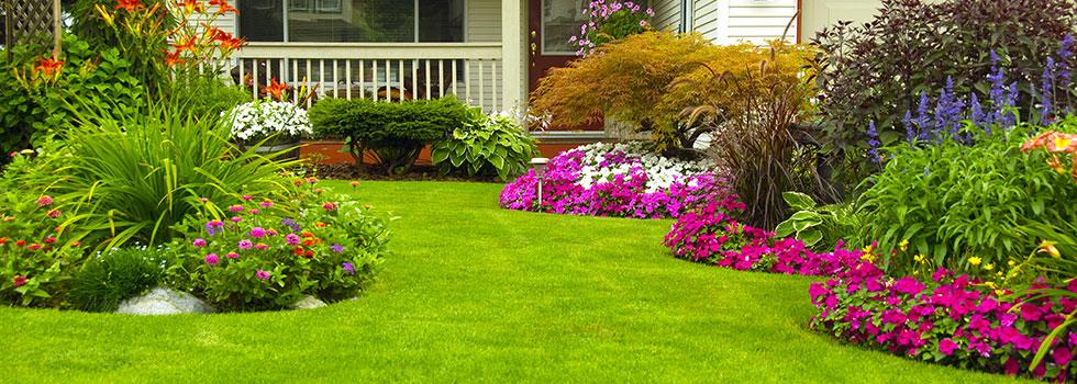Landscape gardener 47