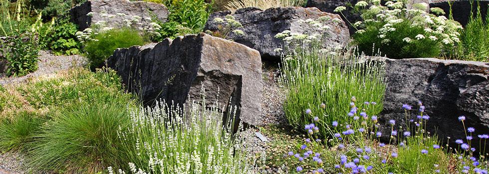 Landscape gardener 49