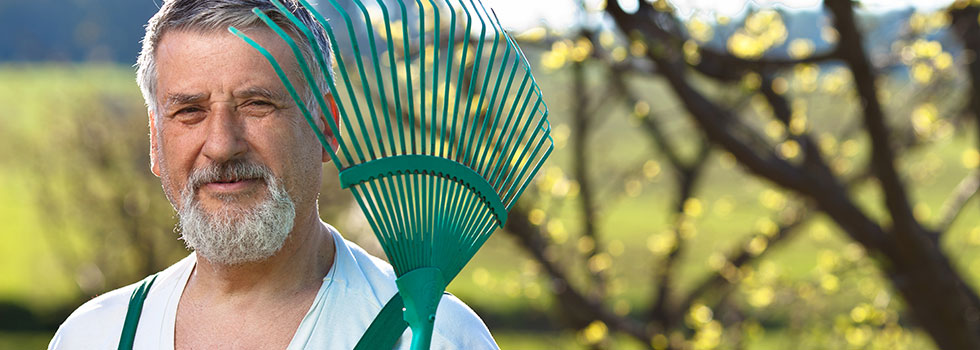 Kwikfynd Landscape gardener 60