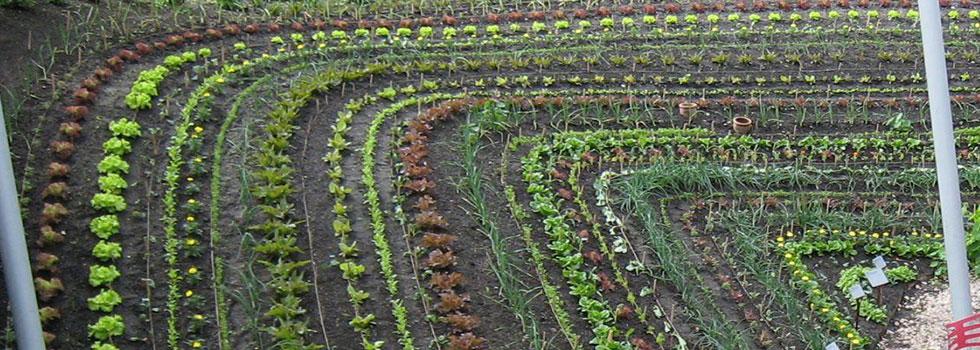 Kwikfynd Organic gardening 10