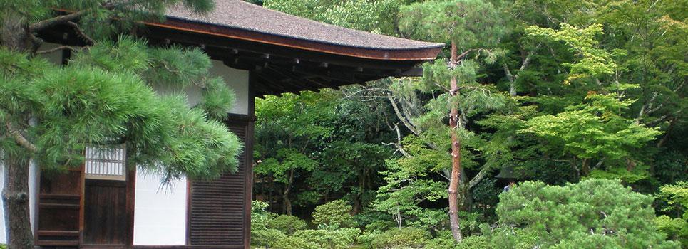 Oriental japanese and zen gardens 3