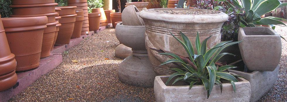 Plant nursery 11