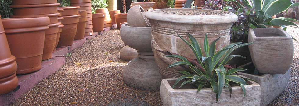 Kwikfynd Plant nursery 11