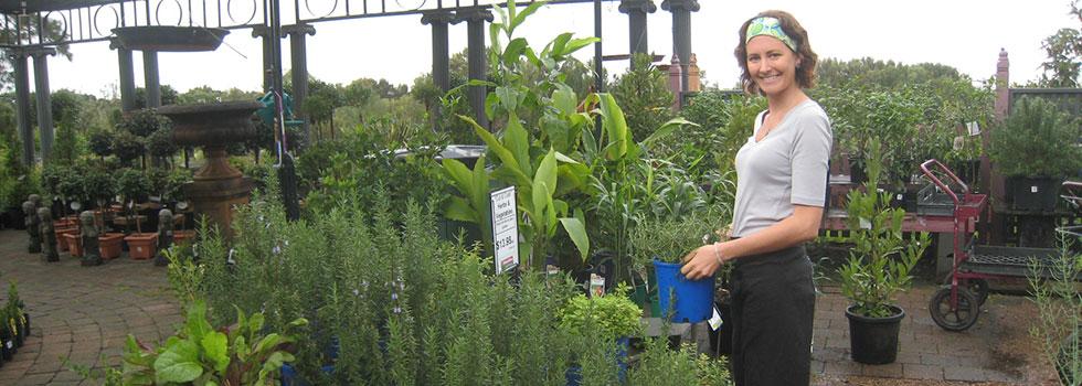 Kwikfynd Plant nursery 5