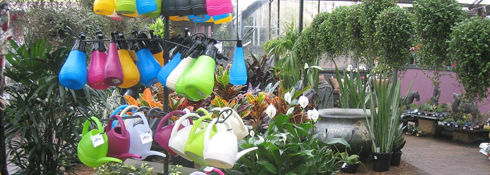 Plant nursery 8