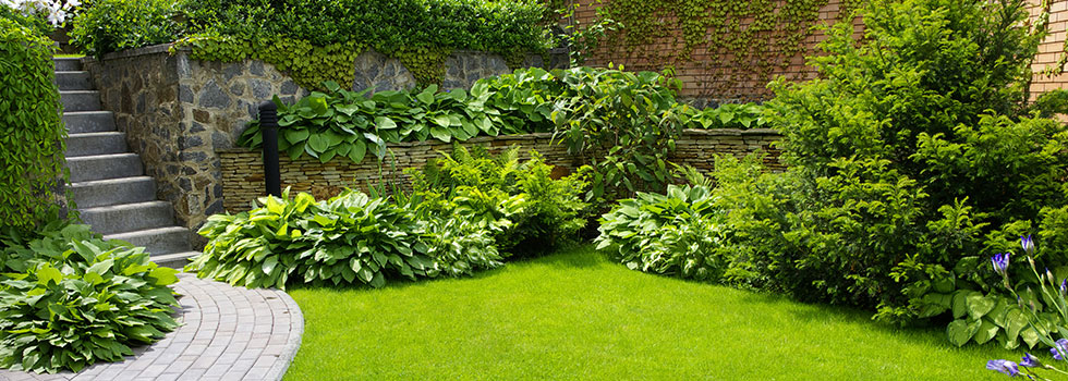 Planting garden and landscape design brisbane brisbane for Landscape gardeners brisbane