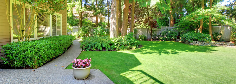 Planting, Garden and Landscape Design