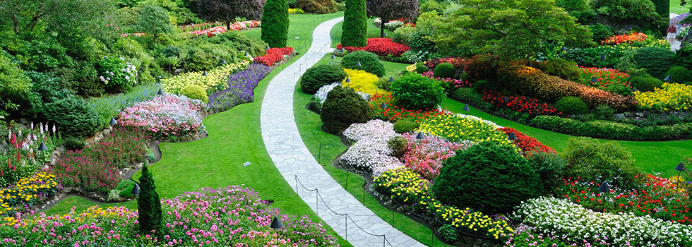 Garden Design With Planting, Garden And Landscape Design Booval, Booval  Planting With Outdoor Landscaping