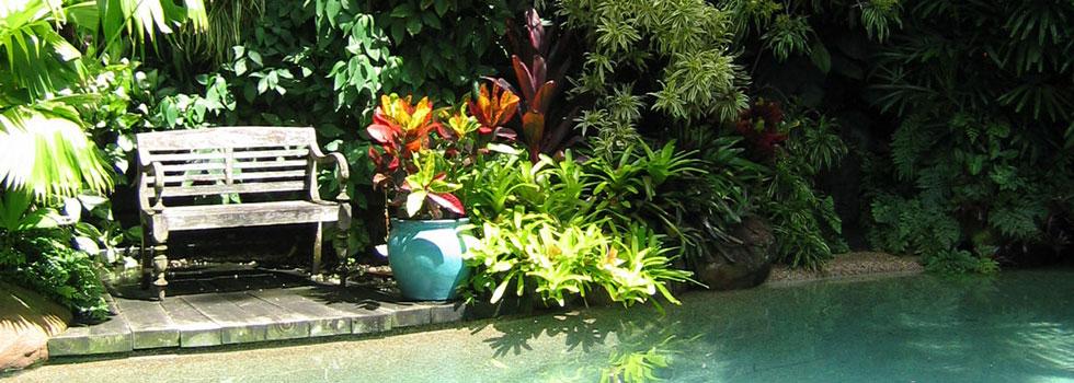 Kwikfynd Plants 26