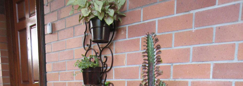 Kwikfynd Plants 44