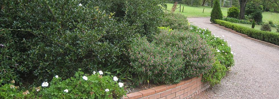 Kwikfynd Plants 46