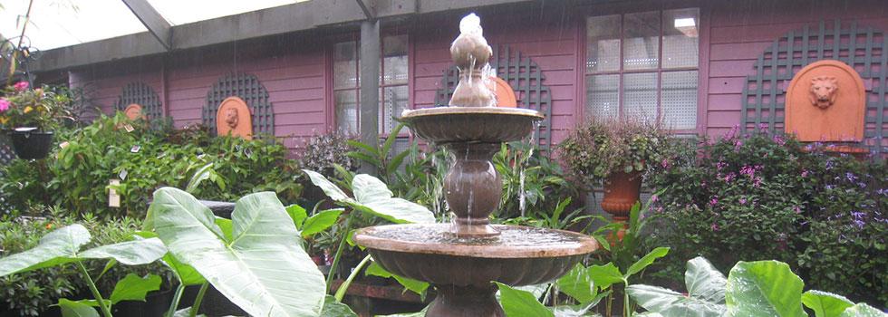 Kwikfynd Plants 54