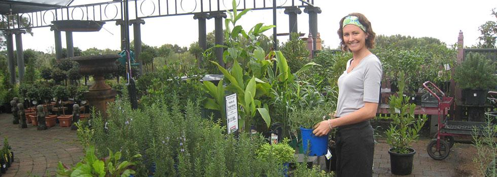 Kwikfynd Plants 56