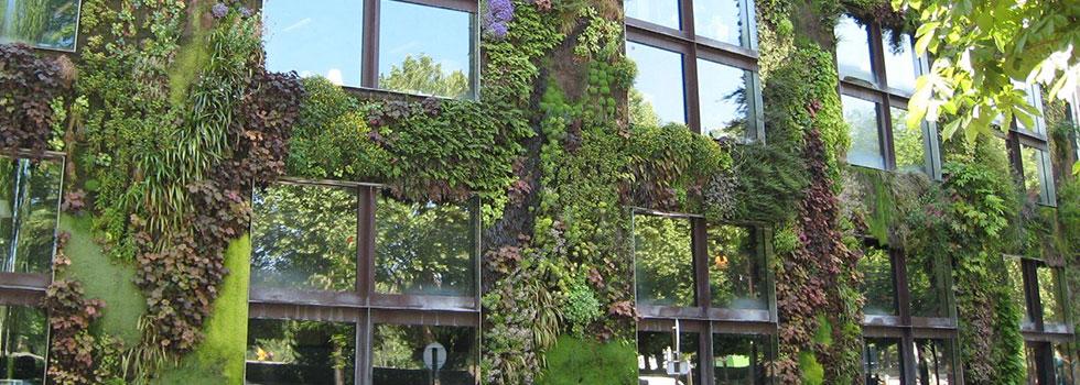 Kwikfynd Plants 6