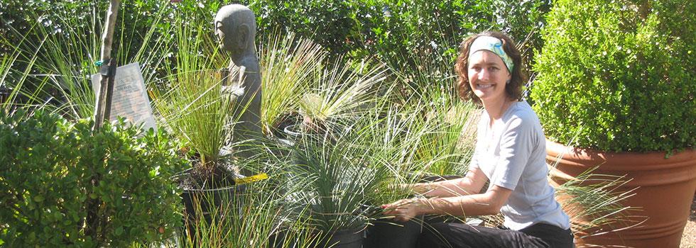 Kwikfynd Plants 68