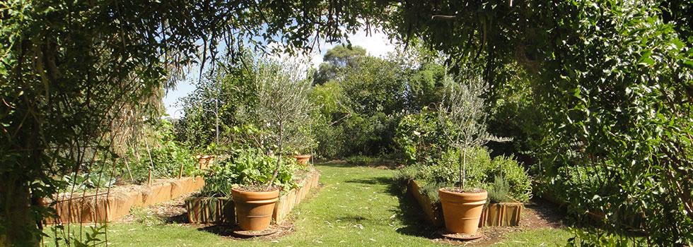 Kwikfynd Plants 76